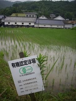 japanreise-2012-241.jpg
